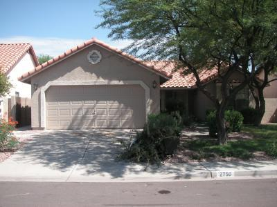 We offer the best house painting in mesa az available for Exterior painting scottsdale az