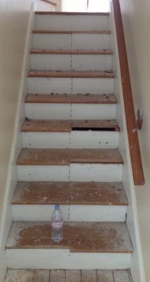 Hardwood Floor Refinishing Margate Nj 08402