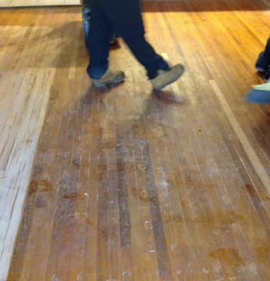 Pet Stains In Hardwood Floors Can They Be Refinished In South Jersey