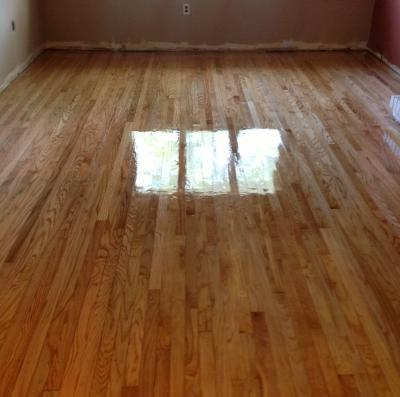Pet stains in hardwood floors can they be refinished in for Hardwood floors good for dogs