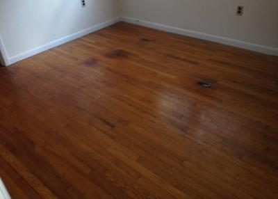 Dustless Hardwood Floor Refinishing Cape May Nj 08204