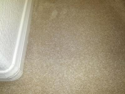 San Diego Ca Carpet Cleaning Bleach Stains On Carpets