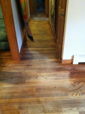 Clinton mass 01510 how to restore hardwood floors without for How to restore a hardwood floor without sanding