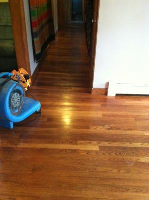 Pro Clean Wood Floors