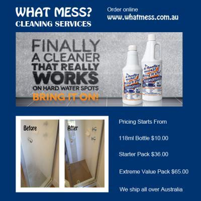 What Mess Cleaning Services