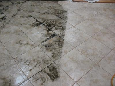 Xenia OH Tile And Grout Cleaning Services - Ceramic tile cleaning company
